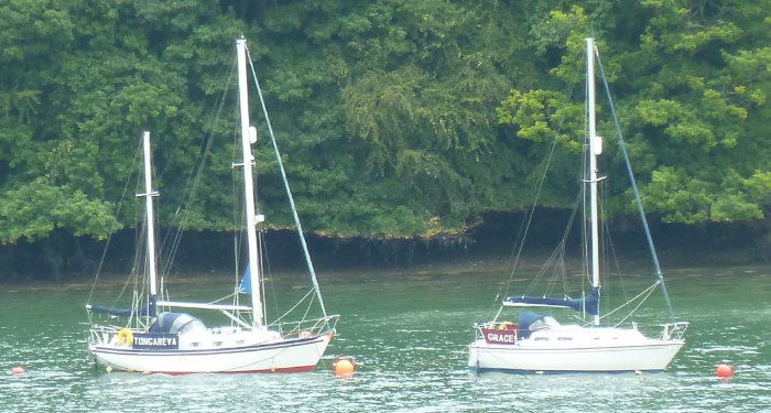 River Dart Moorings2