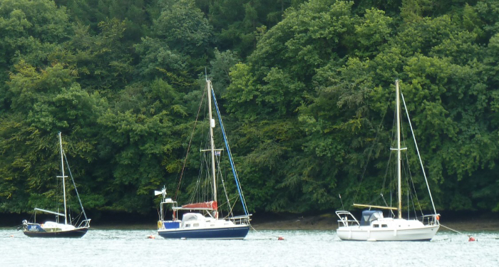 River Dart Moorings3