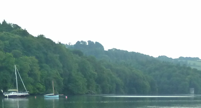 River Dart Moorings 4