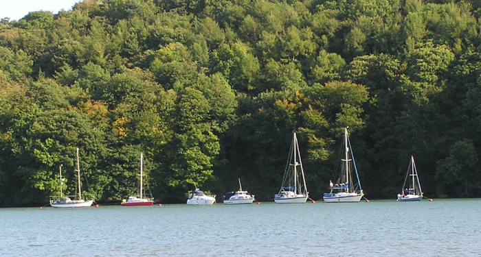 River Dart Moorings 5